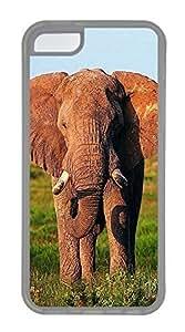 Grassland Elephants1 Cases For iPhone 5C - Summer Unique Cool 5c Cases