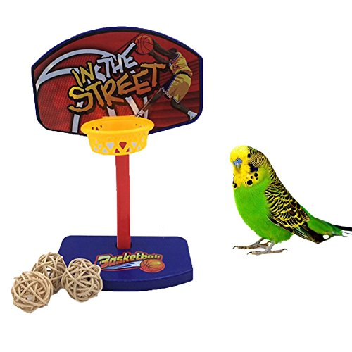 Keersi Natural Wood Perch Stand Training Platform Toy for Parrot Budgie Parakeet Cockatiel Conure Lovebird Finch Canary Macaw African Grey Cockatoo  Eclectus
