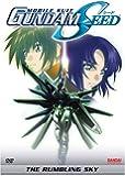 Mobile Suit Gundam SEED: The Rumbling Sky (Movie 3)