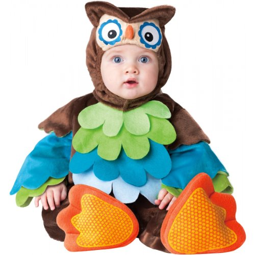 Baby Costumes (InCharacter Costumes Baby's What A Hoot Owl Costume, Brown/Multi, 6 to 12 months)