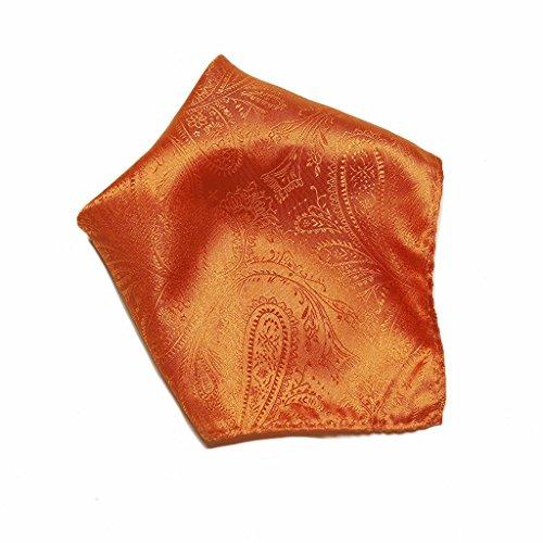 Burnt Orange Paisley Design Men's Hankerchief Pocket Square Hanky