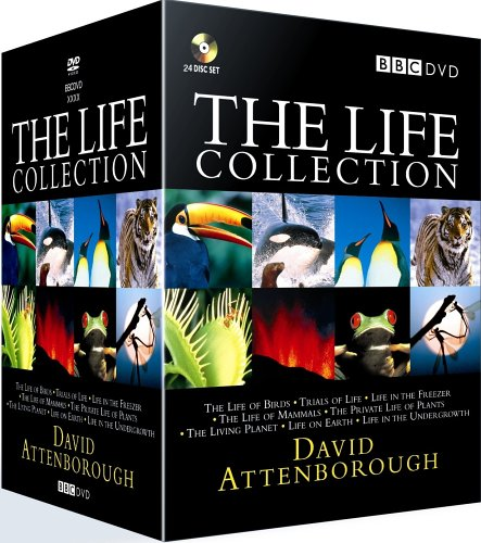 david attenborough africa 1080p download torrent
