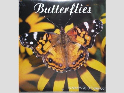 - Butterflies Flowers Leaves 16 Month 2010 Wall Calendar