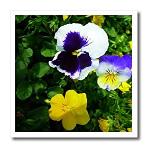 ht_17907_3 Florene Flowers - Royal Pansy - Iron on Heat Transfers - 10x10 Iron on Heat Transfer for White Material