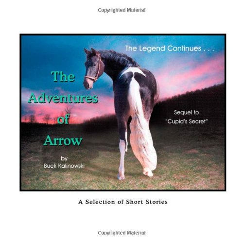 The Adventures of Arrow pdf epub
