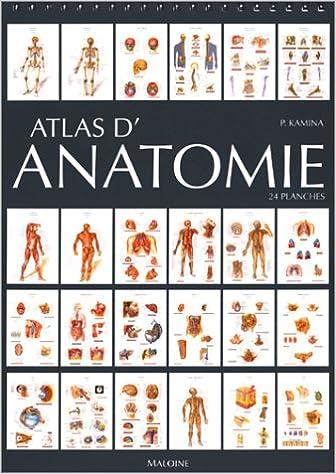 Livres gratuits en ligne Atlas d'anatomie, 24 planches epub, pdf