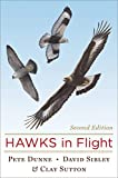 img - for Hawks in Flight: Second Edition book / textbook / text book