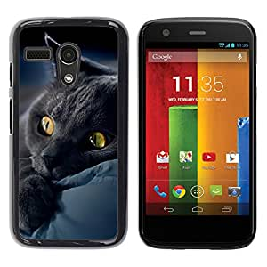 Vortex Accessory Hard Protective Case Skin Cover For Motorola Moto G ( 1St Gen Only ) - Black Cat Bombay Chartreux Kitten