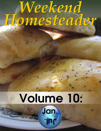 Weekend Homesteader: January by [Hess, Anna]