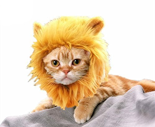 HTKJ Lion Mane Cat/Dog Costume Cute Adjustable Washable Pet Wig Hat for Cat or Small Dog Clothes Dress up Halloween Christmas Easter Festival Party Activity (Cat-Brown) Dog Cat Costume Pet Clothes