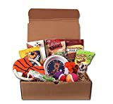Best Dog Puppy Gift Treats Pet Toy Box Set Review