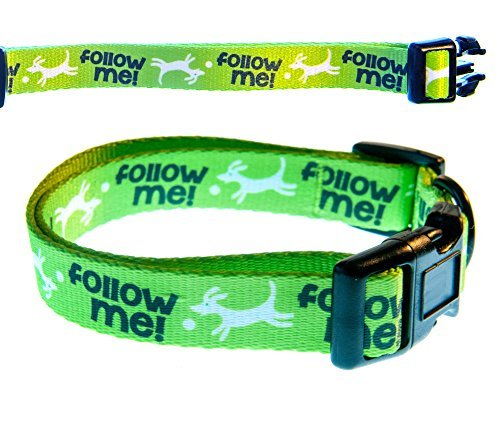 Punchline Pet Funny Dog Collar 'Follow Me' Soft Nylon Adjustable Dog Collar, Medium