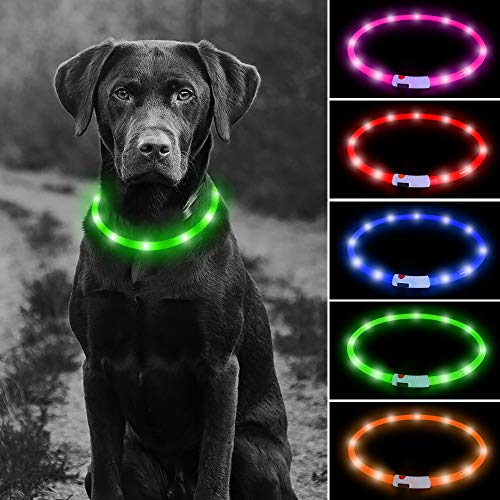Higo LED Dog Collar, USB Rechargeable Glowing Pet Safety Collars, DIY Silicone Light Up Necklaces to Keep Your Dogs Be Visible& Safe in The Dark(Green)
