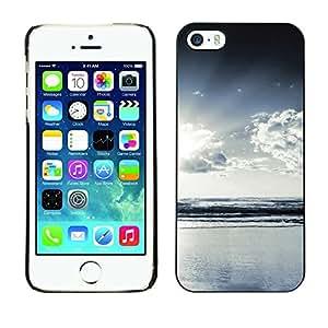 Cubierta de la caja de protección la piel dura para el Apple iPhone 5 / 5S - Funny Bug
