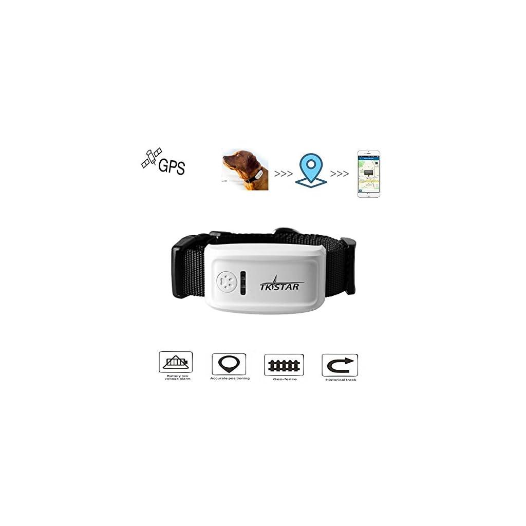 pet-gps-tracker-colar-localizador-de-localizacao-em-tempo-real-colar-para-caes