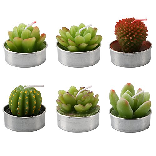Cactus Tealight Candles:: Hombae Handmade Delicate Succulent Cactus Candles:: For Birthday Party ,Wedding, Spa, Home Decoration, Holiday (6 PCs in Pack)
