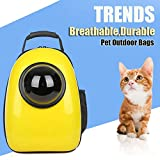 Best VTech Baby Carriers - Travel Outdoor Pet Carrier Bags Breathable Backpack Review