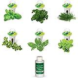 AeroGarden Gourmet Herb Seed Pod Kit (6-Pod)