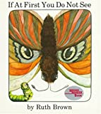 If at First You Do Not See, Ruth Brown, 080501053X