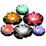Best Floating Pool Lights - Acmee Color Changing LED Light up Floating Lily Review