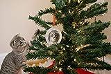 Pearhead Santa Claws Cat Photo Ornament, A