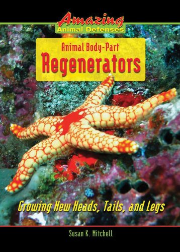 animal body parts book - 6