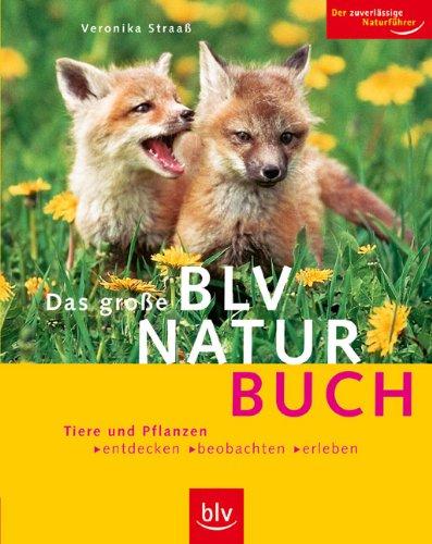 Das grosse BLV Naturbuch: Tiere und Pflanzen entdecken, beobachten, erleben. Der zuverlässige Naturführer