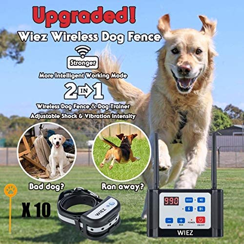 WIEZ Wireless Dog Fence Electric Training Collar 2-in-1, Dual Antenna, Adjustable Range Control 100-990 ft, Adjustable Warning Strength, Rechargeable,Harmless for All Dogs,for Outdoor-1 Collar