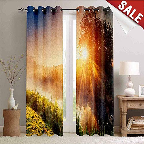 - Nature, Thermal Insulating Blackout Curtain, Magical River with The Grass in Sun Rays Beams Tree Dramatic Ukraine Rural Print, Blackout Draperies for Bedroom, W84 x L96 Inch Multicolor