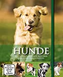 Hunde - Geschenkbox mit Buch & DVD: Rassen - Pflege - Geschichte