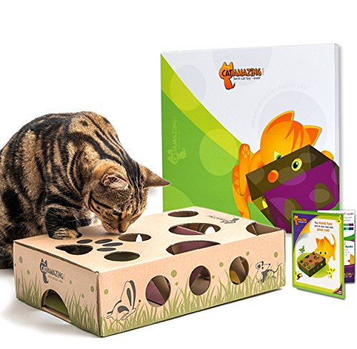 5109 NJVwWL - CAT AMAZING - Best Interactive Cat Toy Ever! Treat Maze & Puzzle Feeder for Cats