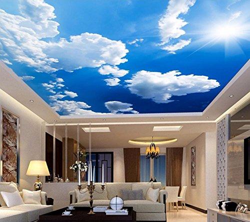 Weaeo カスタム3D天井壁画の壁紙青空と白い雲の家の装飾壁の壁画の壁紙リビングルームの壁紙-350X250Cm B07FN1JMPB 350X250cm 350X250cm