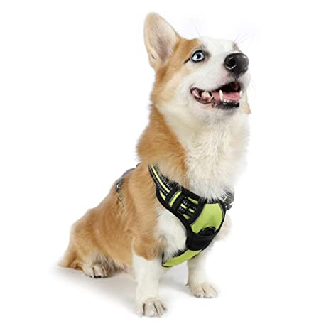 Newly Adjustable Soft Led Luminous Dog Harness Pets Control Breathable Chest Strap Vest Pet Products Harnesses