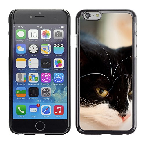 Premio Sottile Slim Cassa Custodia Case Cover Shell // V00003112 cat repos // Apple iPhone 6 6S 6G PLUS 5.5""