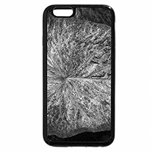 iPhone 6S Case, iPhone 6 Case (Black & White) - New display at the Pyramids 28
