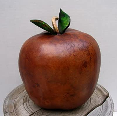Apple Gourd - 12 Seeds