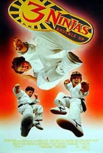 the 3 ninjas knuckle up - 7