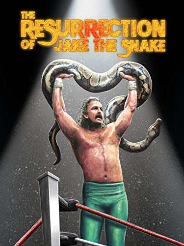 The Resurrection of Jake The Snake (Wwe Rock Best Fight)