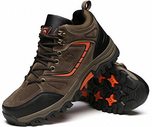 escursionismo Uomo escursionismo Sports escursionismo Stivali Marrone donna Ben da C Scarpe da da da Calzature 7zxdx4nqwt