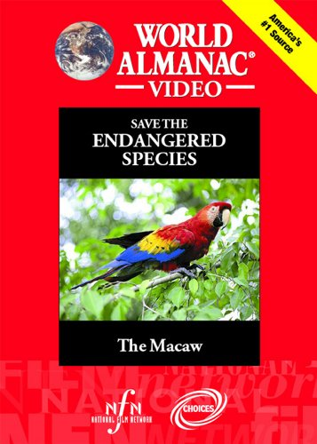 The Macaw ()