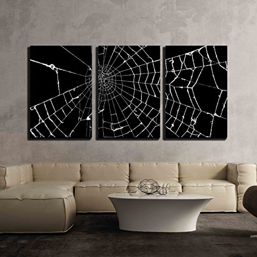 wall26 - 3 Piece Canvas Wall Art - Spider Web on Black Background - Modern Home Decor Stretched and Framed Ready to Hang - 16