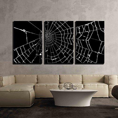 Spider Web on Black Background x3 Panels