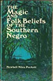 Folk Beliefs of the Southern Negro, Newbell Niles Puckett, 0486224600
