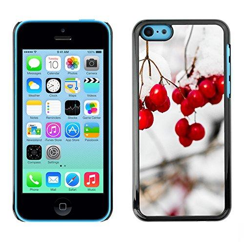 Premio Sottile Slim Cassa Custodia Case Cover Shell // F00016767 tree Snowball // Apple iPhone 5C