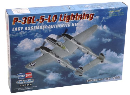 P-38 Lightning Model Airplane - 3