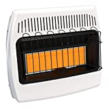 Infrared Vent Free Wall Heater (30,000 BTU, Liquid Propane)