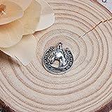 Acxico 20Pcs Tibetan Silver Lucky Horse Shoe & Head