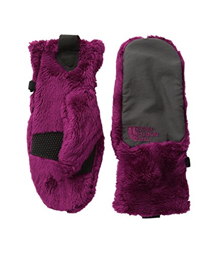 The North Face Kids Girl's Denali Thermal Mitt (Big Kids) Roxbury Pink (Prior Season) SM (7-8 Big Kids)