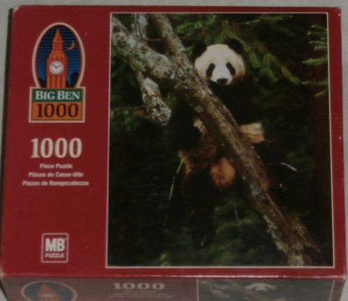 Wolong Panda Reserve China - Big Ben GIANT PANDAS - Wolong Natural Reserve, China - 1000 piece puzzle