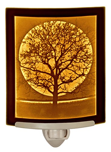 Midnight Moon - Curved Porcelain Lithophane Night Light